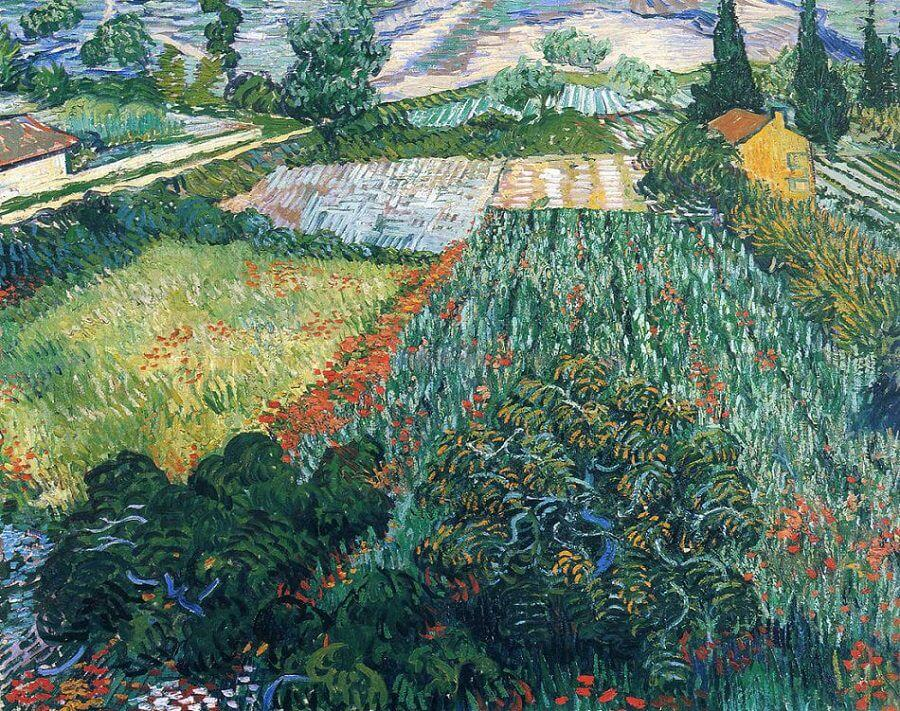 Field with Poppies, 1889 by Vincent Van Gogh